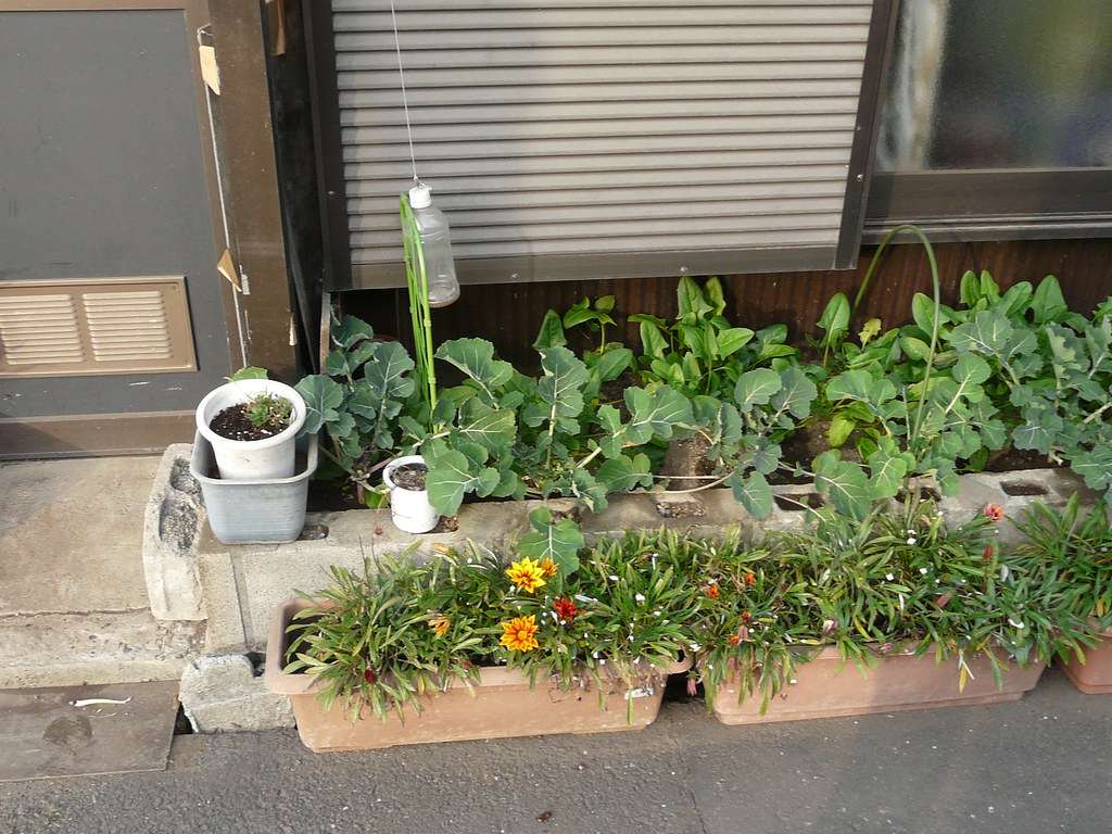 Breeze Block Planter Garden Fixes