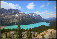 "Peyto Lake seen from Bow Summit (Joalhi ""Back in Miami"") Tags: park lake canada national alberta parkway banff icefield peyto coth5"