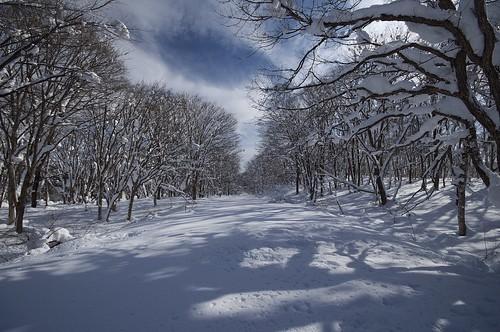 201001117880雪道_R