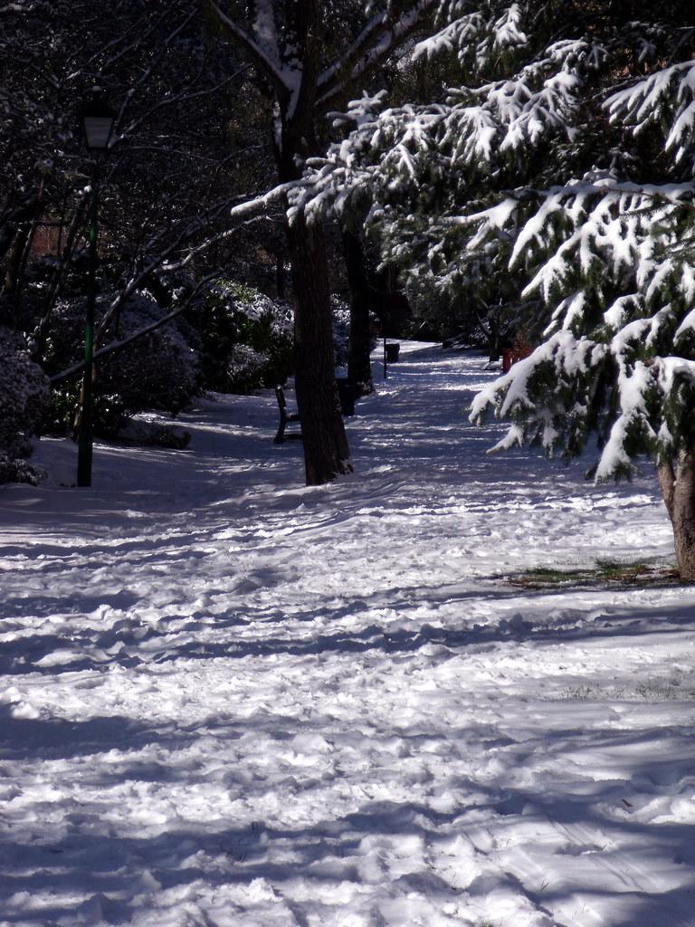 Caminante no hay camino, se hace camino al andar