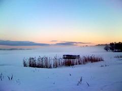 Snow_morning (Lady Fi) Tags: fog freezingfog sweden frozenlake