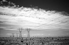 they're coming! (lonely radio) Tags: film clouds australia rangefinder victoria powerlines kodaktrix pylons bessar4a cosinavoigtlander nokton40mmf14sc orangefilter4x scansf1001150047 believeinfilm