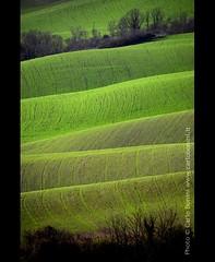 "Tuscany (Carlo ""Granchius"" Bonini) Tags: italy verde green grass landscape nikon hills tuscany siena toscana valdorcia prato paesaggio colline cretesenesi d300 kartpostal abigfave platinumphoto carlobonini superlativas granchius platinumsuperstar"