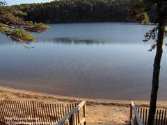 Entry to Gull Pond (The Cape Cod 2) Tags: beaches ponds wellfleet gullpond