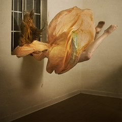 immortal bird (brookeshaden) Tags: bird lines vintage fly escape dream negativespace gravity openspace immortal weightless selfie brookeshaden