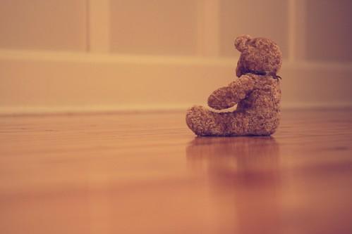 27 - Teddy