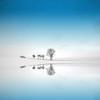 Blue Season (Philippe Sainte-Laudy) Tags: blue trees winter reflection nature landscape goldcollection bratanesque platinumheartaward philippesaintelaudy world100f whitesoul famoussquarecaptures bestofmywinners