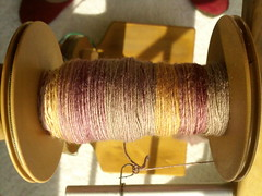 Southern Cross Fiber cashmere/merino in Hay Sunrise