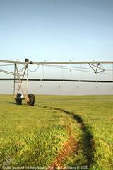 محوري المزرعة 1 (anas_albleahy) Tags: 2 المزرعة محوري