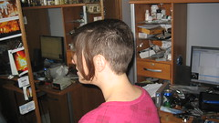 IMG_0863 (raiH enaS) Tags: haircut hair brittany shaved smoking short shorthair buzzednape