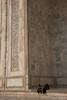 Taj Mahal (ताज महल) : Pause (jf garbez) Tags: voyage travel people india nikon asia indian tajmahal agra unesco mausoleum asie nikkor indien personnes gens inde nationalgeographic uttarpradesh indienne 18200mm mausolée unescoworldheritagesites habitant d80 nikond80 bhāratganarājya आगरा patrimoinemondialdelunesco ताजमहल भारतगणराज्य उत्तरप्रदेश bâtimentsreligieux nikonpassion nikonflickraward nikkor1802000mmf3556 âgrâ religiousedifice mygearandme mygearandmepremium mygearandmebronze ringexcellence lpmarble
