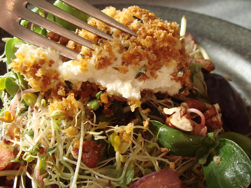 Warm Baked Goat Cheese & Sprouts: Gooey Cheese