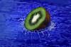 Kiwi (Sulaiman_Q8) Tags: alsalahi suliaman