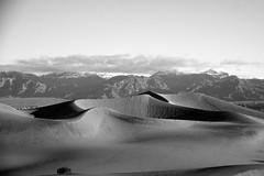 Mesquite Dunes at Sunrise (MeaghaHertz) Tags: california park death sand desert national valley mesquitedunes thechallengegame challengegamewinner
