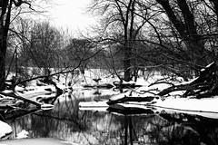 Whisper (CJ Schmit) Tags: park trees winter blackandwhite bw white snow black cold ice water monochrome wisconsin canon river landscape blackwhite sticks woods stream peace ripple branches calm hidden serenity whitnallpark whitnall hal