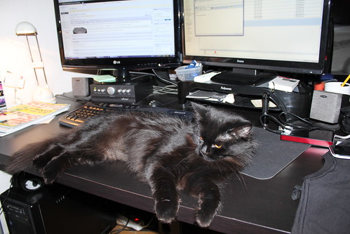 Schluss mit Computer für heute!