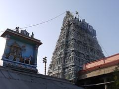 Parathasarathy Temple
