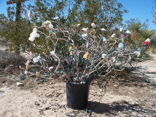 bird nest tree 001