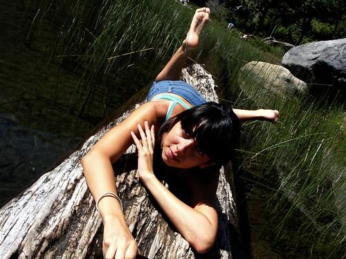 Bubi sobre un tronco