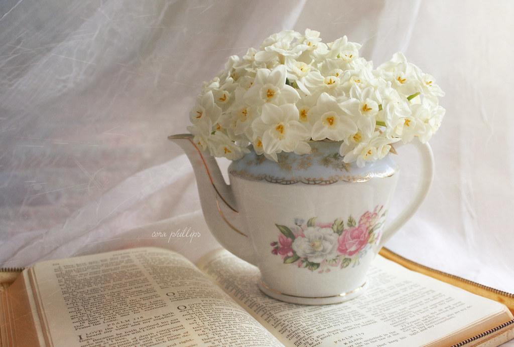 Blooming Tea Pot