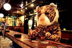 tijger bar