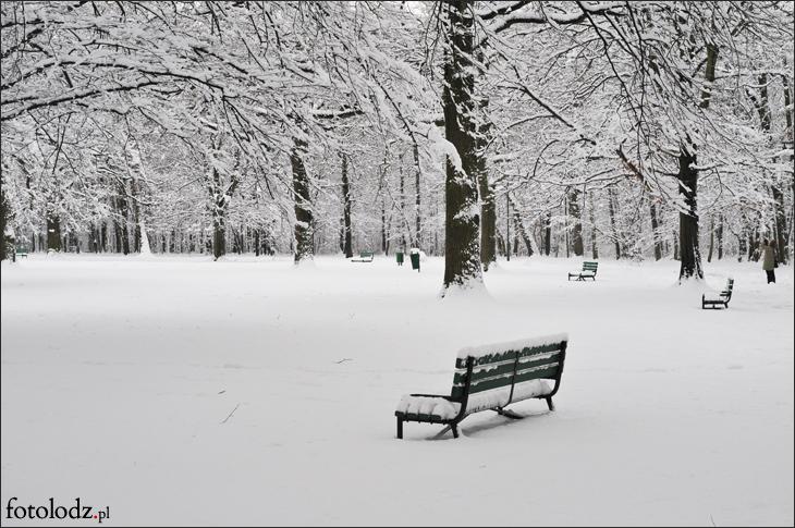 Parku Zdrowie zimą