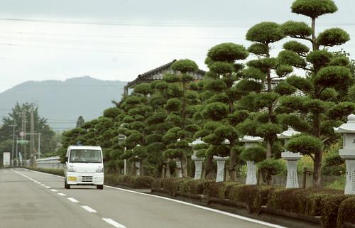 Japan Day  Kagoshima 085