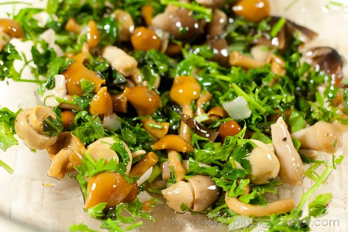 mushroom antipasto with fresh herbs