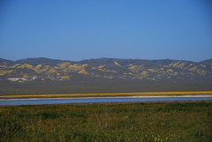 View from Soda Lake Overlook