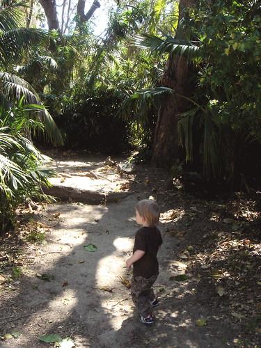 lush path
