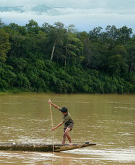 Paddling downstream on his dugout canoe (Bn) Tags: walking rainforest wildlife naturereserve paddling dugout junglebook rainyseason strolling dugoutcanoe attapeu logboat sekongriver sekong salavan wildelephants animalhabitat asiaticgoldencat yellowcheekedgibbon unspoilednature sekongprovince childrenoftheriver therhythmofthejungle xekhongrivier vangxanghotel reservearea1975km2 annamitemountainrange steepandruggedterrain eastsouthernoflaos 280differentbirdspecies densityof8personskmintheprovince boyspaddlingontheirdugoutcanoe wildelifewatching dongamphannationalbiodiversityconservationarea pantherandtiger childrenofdongamphannaturereserve remotesouthernlaos paddlingdownstream boypaddlingonhisdugoutcanoe