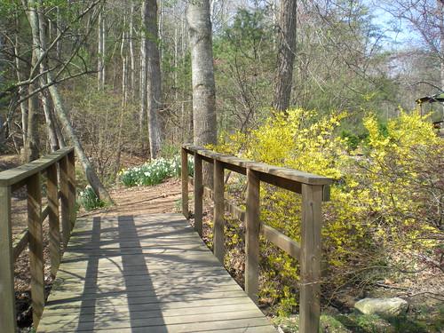 Arboretum Park, Massanutten