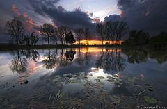 Painting the light (Tommaso Renzi) Tags: sunset lake reflections lago tommaso riflessi renzi stagno sezze priverno gricilli wonderworldgallery tommasorenzi