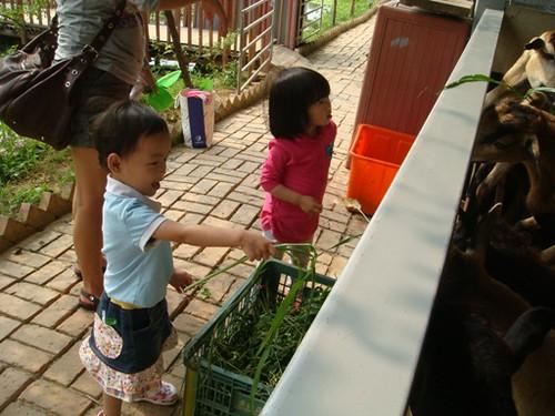 土豆媽咪 拍攝的 DSC06098。