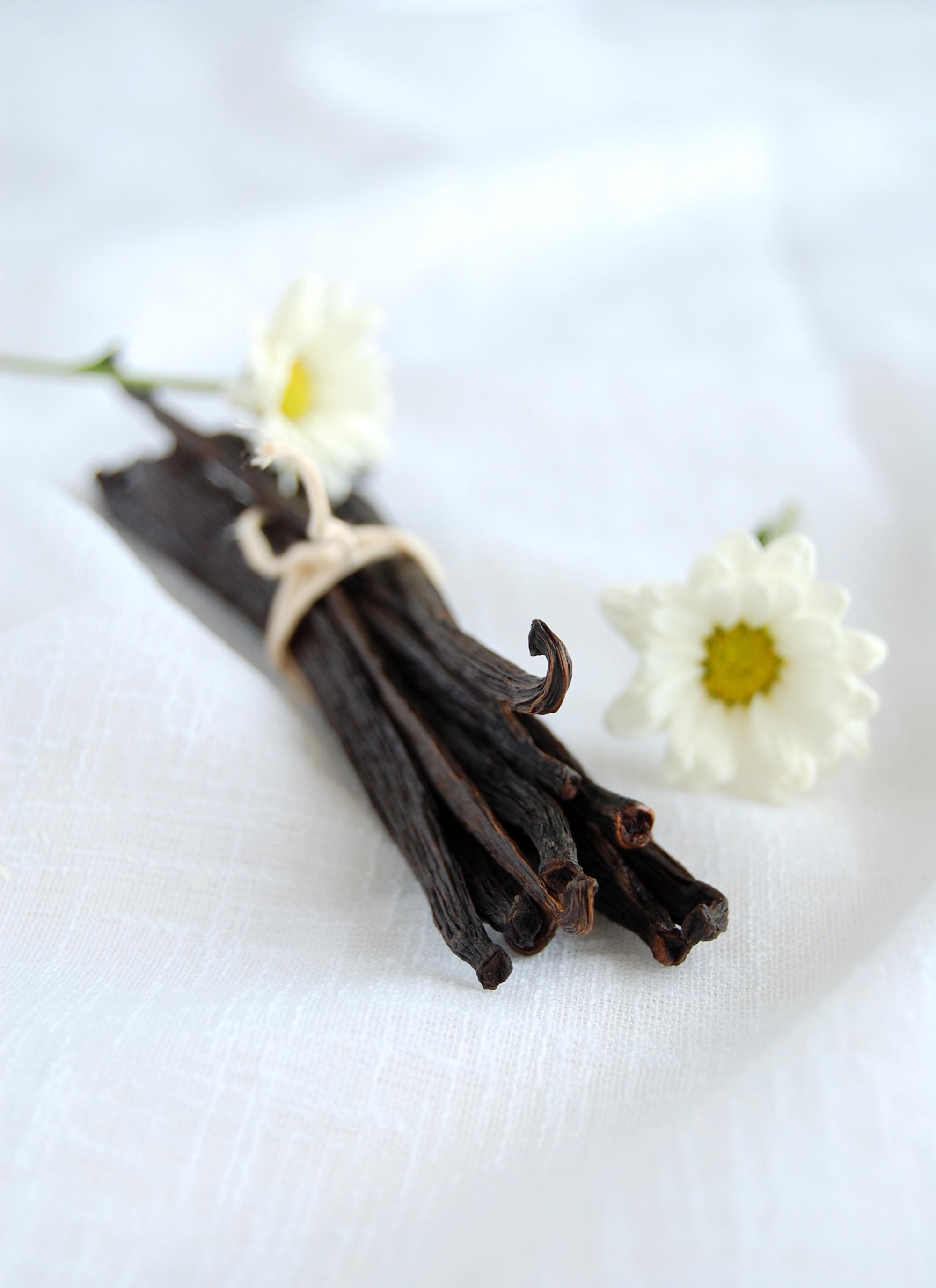 White chocolate and vanilla fudge cakes / Bolinhos fudge de baunilha e chocolate branco