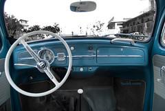 Driving a Volkswagen Beetle (Michele Cannone) Tags: auto car volkswagen drive 60s driving blu beetle badge 70s anni70 vinatge maggiolino guidare