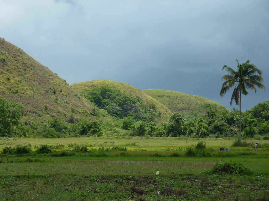Bohol-Talibon-Chocolate Hills (41)