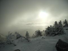 黒百合平から天狗岳山頂へ