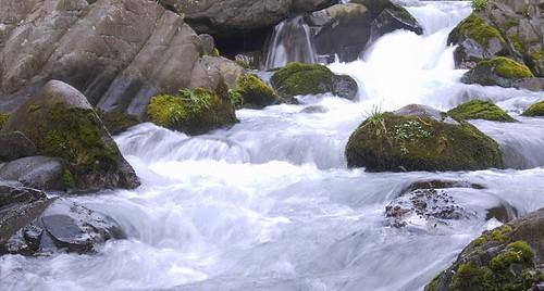 Rio Bao aguas arriba