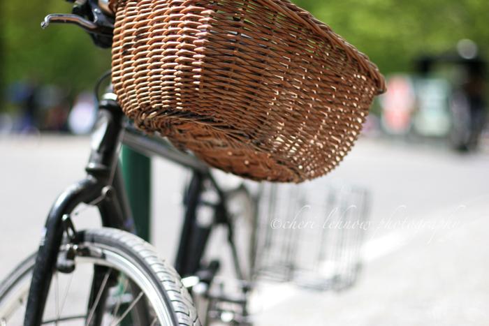 IMG_8348_bike.jpg