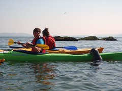 DofE Sea Kayaking, Anglesey