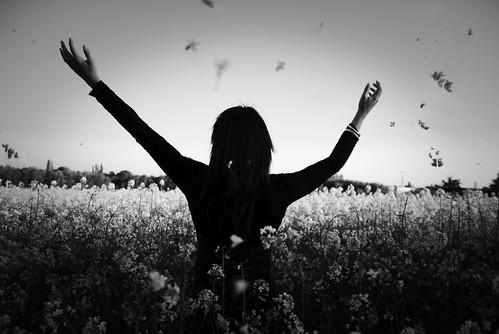 [フリー画像] 人物, 女性, 花畑, 人と風景, 後ろ姿, モノクロ写真, 201004250900