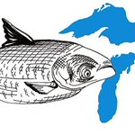 From flickr.com: Asian Carp Invade the Great Lakes {MID-70293}