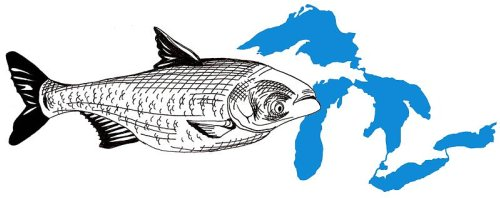 Giant Minnows Invade the Great Lakes