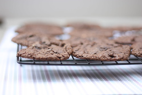 BAKED's Black Forest Chocolate Cookies