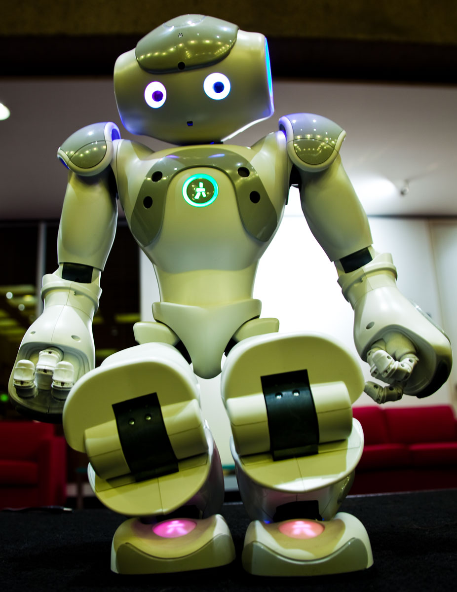 This is Nao, the humanoid UTS will be sending to Robocup 2010