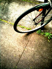 Daily iPhone photos: spokes on a Sunday morning