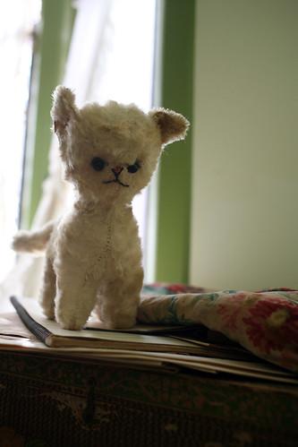 Ratty Kitty