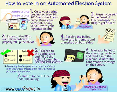 how to vote 2010 elections