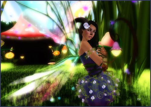 Petite robe - Page 2 4590770977_182dc45dd1
